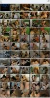 221612313_dbm-video-distribution-german-dbm-xxx-hardcore-video-entertainment-dxxx6023.jpg